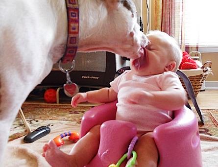 beba i wnjam